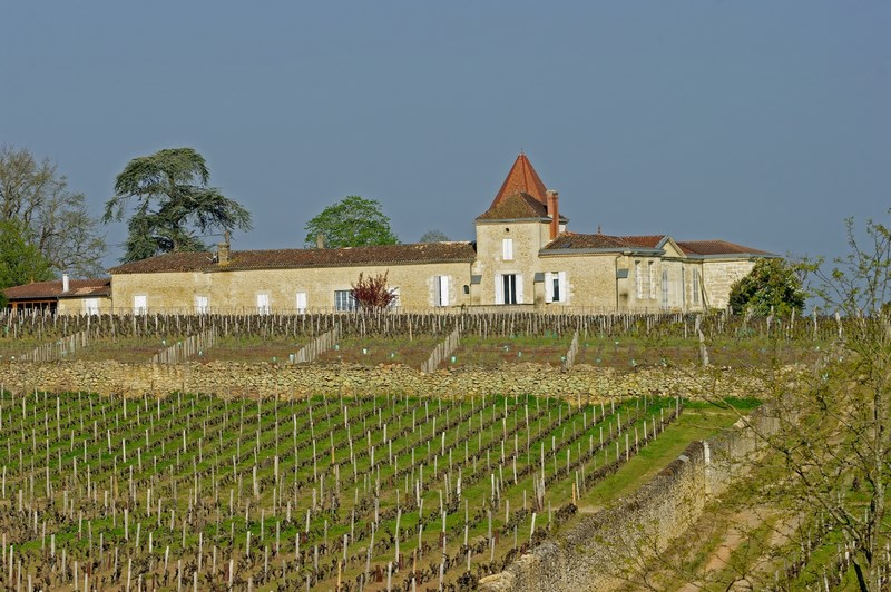 Château Rabaud Promis – BOMMES – Sud-Gironde