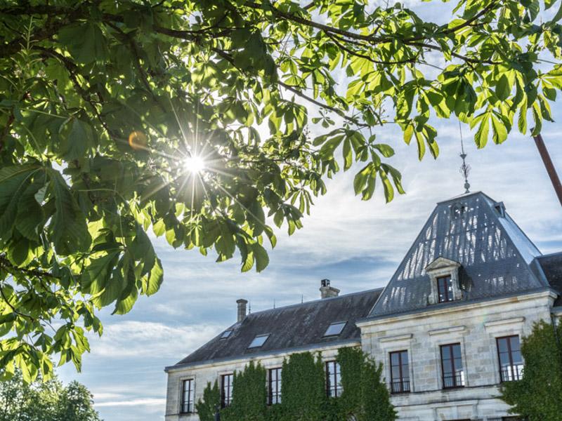 Château-d-Arsac6