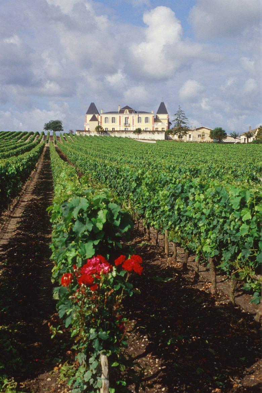 Chateau_de_France (2)