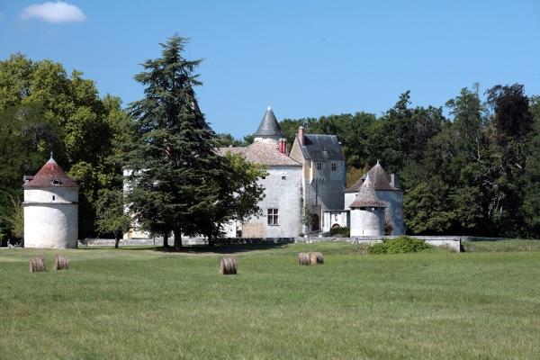 Château de La Brède 1
