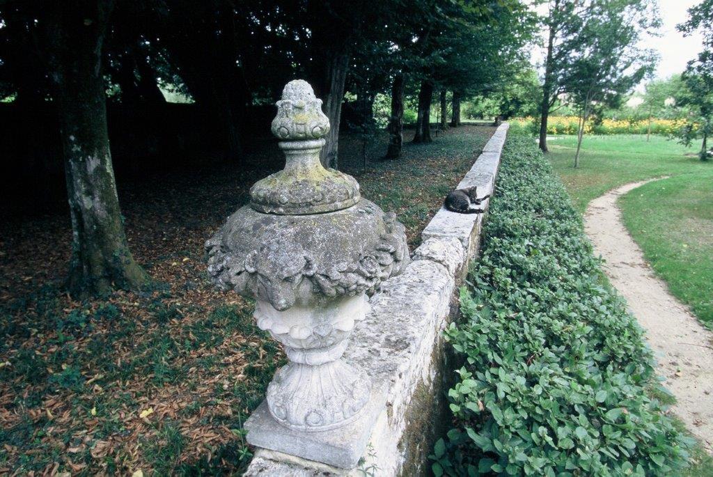 Château de Mongenan – jardin pour l'agrément