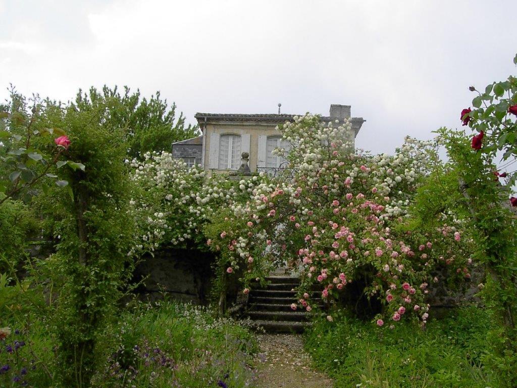 Château de Mongenan – jardins d'utilité 2