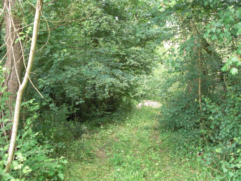 Chemin Gallien