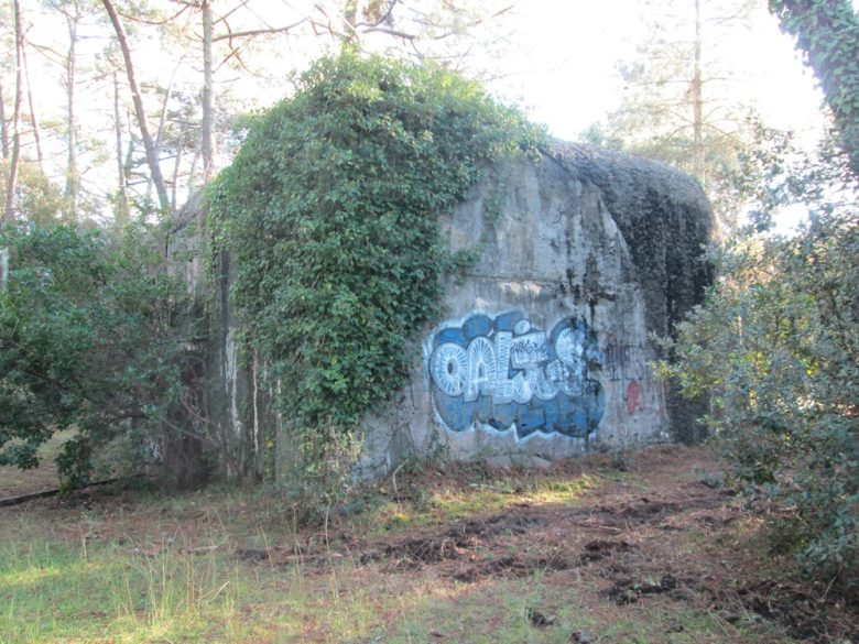 Decouvrir-le-mur-de-l-atlantique-2-4