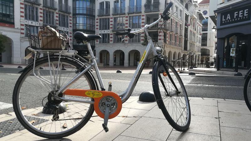 Dingo Vélos (11)