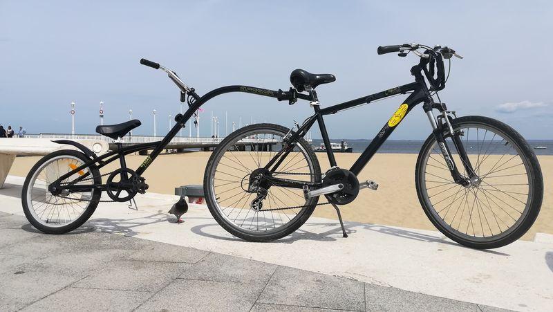 Dingo Vélos (4)