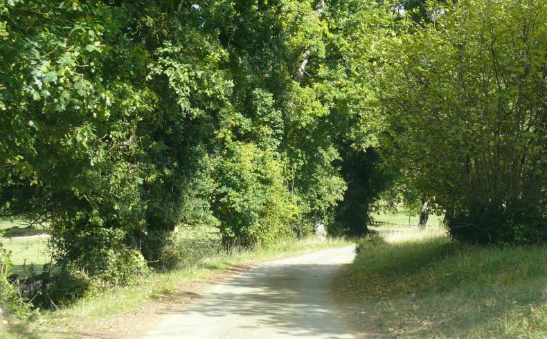 Domaine de la Burthe – Floirac (1)