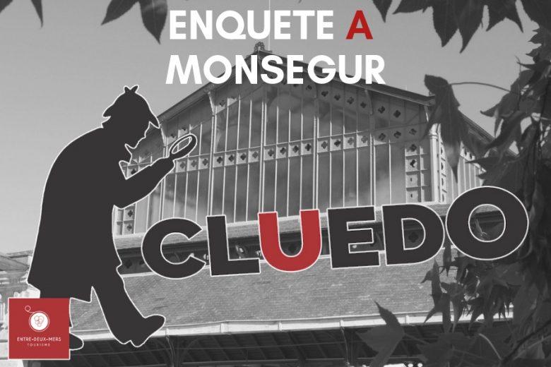 ENQUETE-A-MONSEGUR