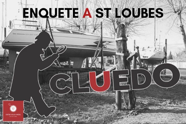 ENQUETE-A-ST-LOUBES