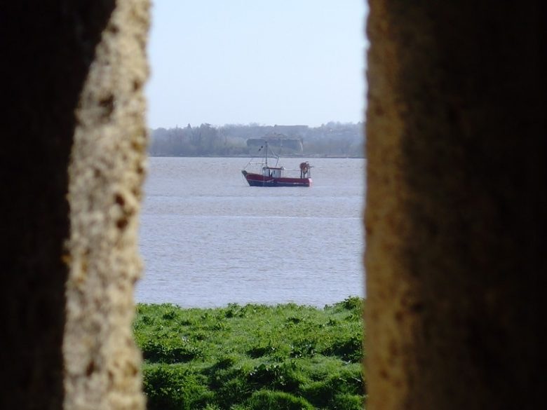 FORT MEDOC CHASSE AUX OEUFS 2010 021 800×600