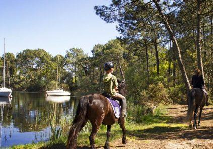 Hourtin : la réserve des dunes et marais à cheval
