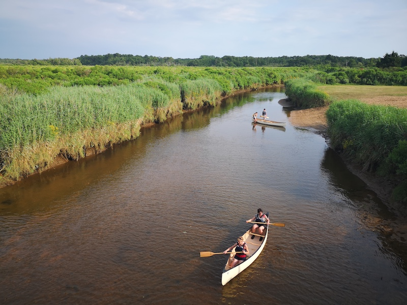 Canoe dans le delta