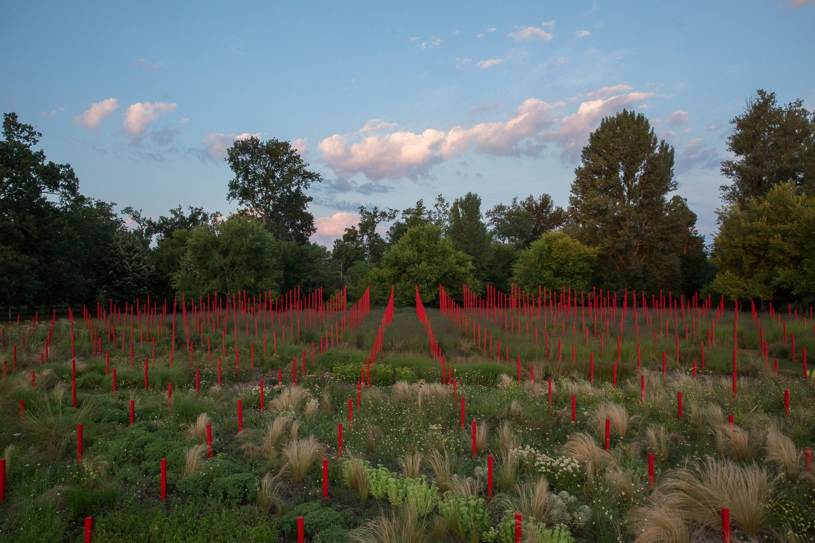 Jardin-Millesime—-Credit-photo-Yann-Monel-3