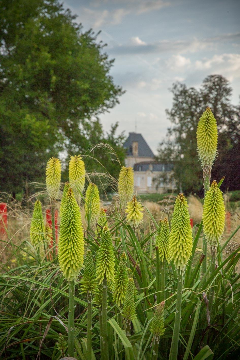 Jardin-Millesime—Credit-photo-Yann-Monel–1–2