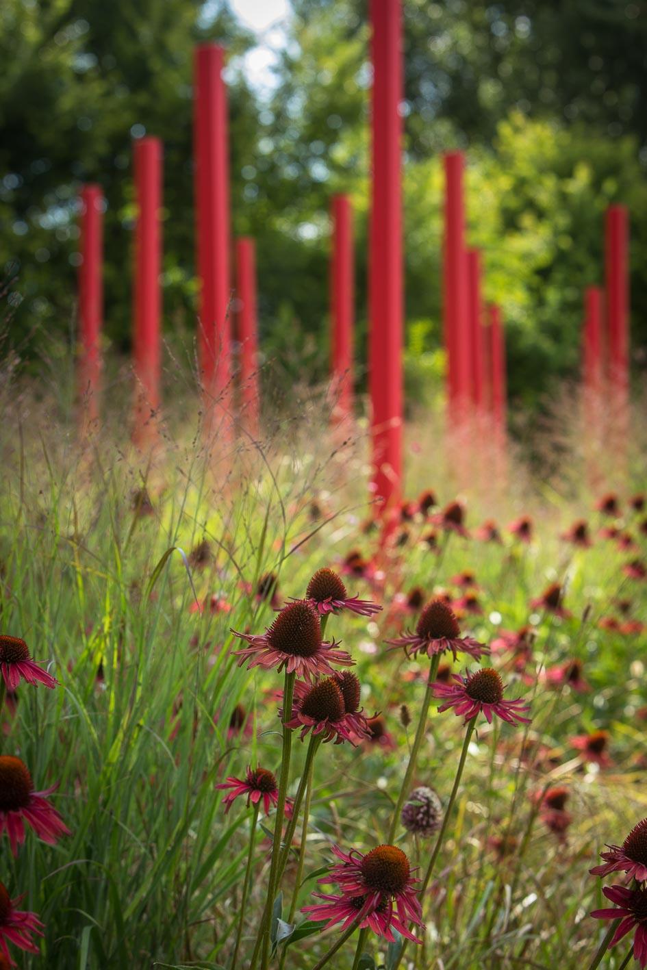 Jardin-Millesime—Credit-photo-Yann-Monel–3–2