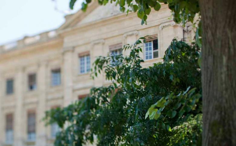 Jardin de la mairie de Bordeaux (3)