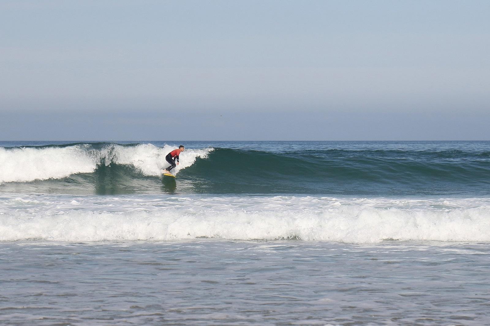 Koala Surf School