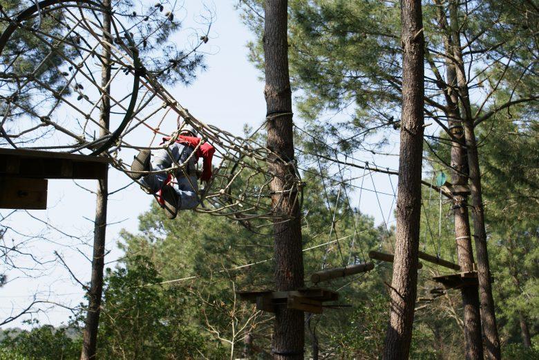La Forêt des Accromaniaques9
