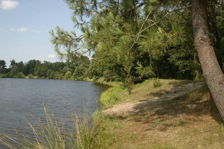 Lacs_Moulin_Blanc_st christoly de blaye 800×600