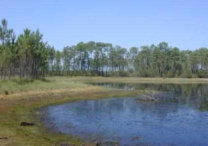 Lagunes du Gât Mort