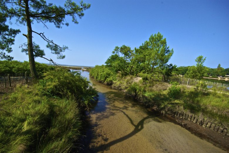 Le Site Naturel Sensible de St Brice