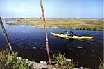 Le Teich – Maison de la Nature du Bassin d'Arcachon