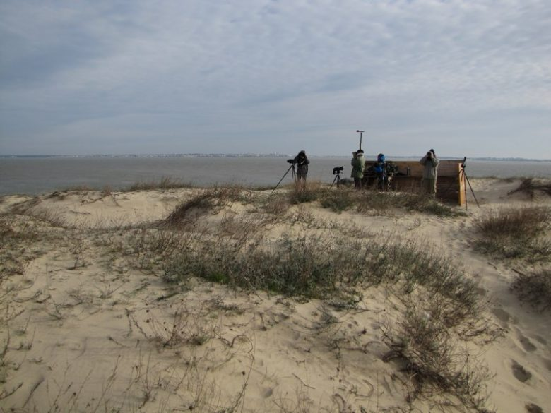 Le site d'observation domine l'estuaire et l'océan