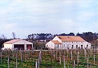 Marcillac – Domaine de Tout L'Y Faut
