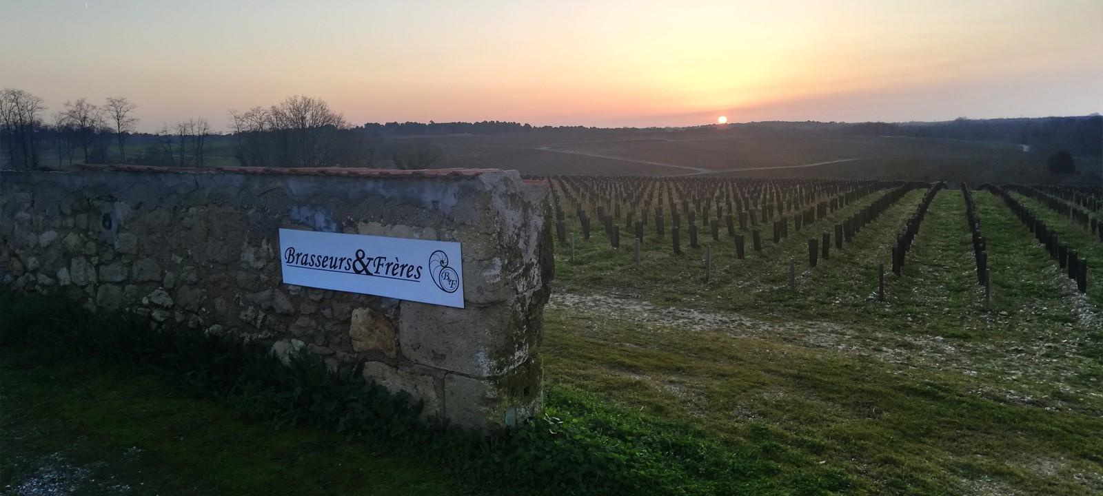 Mur Vignes Brasseurs et Frères