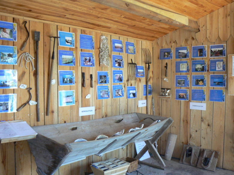 Musée de l'Huitre port ostréicole Int