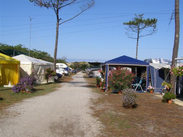 Naujac-sur-Mer – Camping du Pin Sec