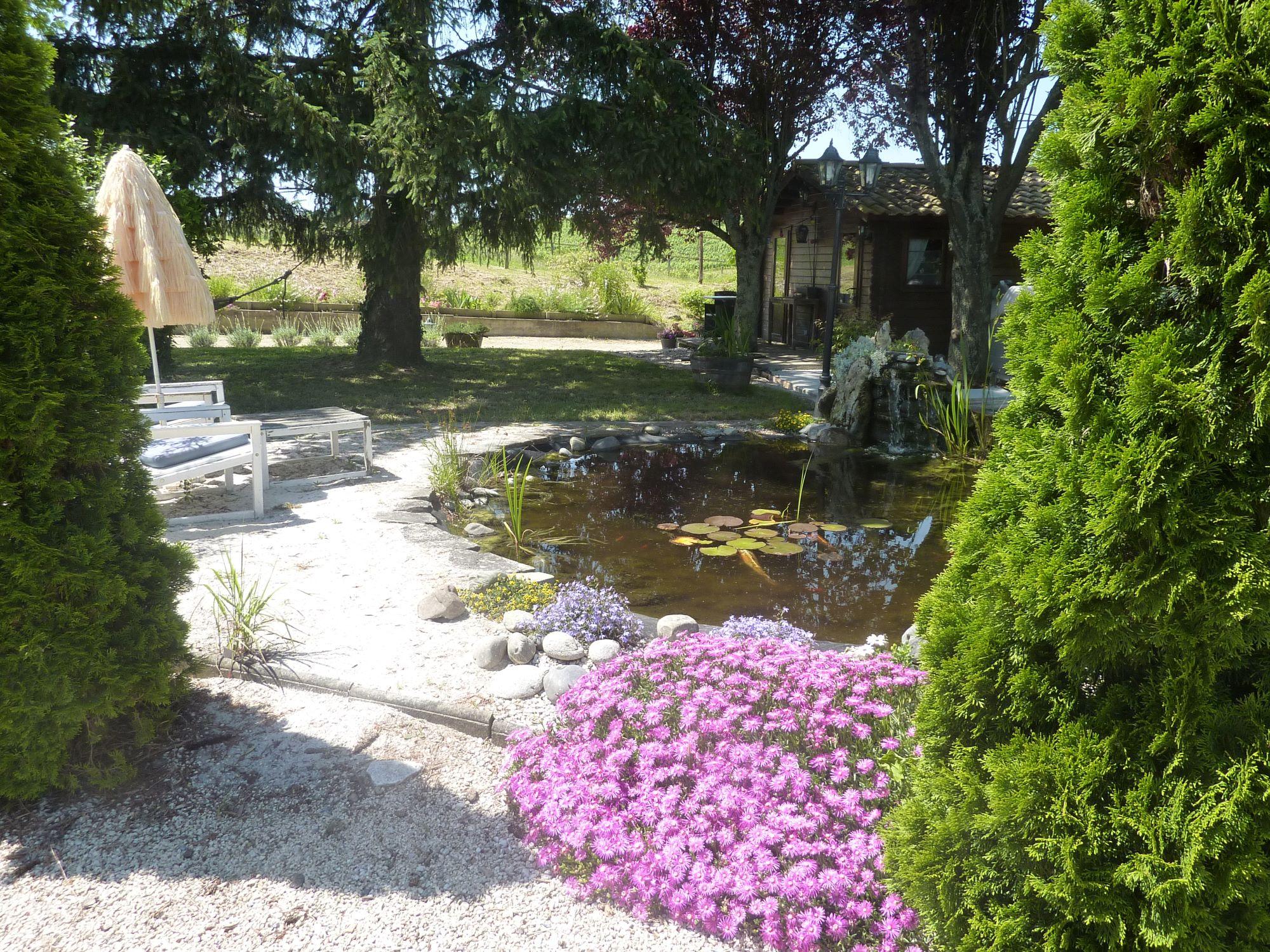 exterieur jardin de chalet le bassin