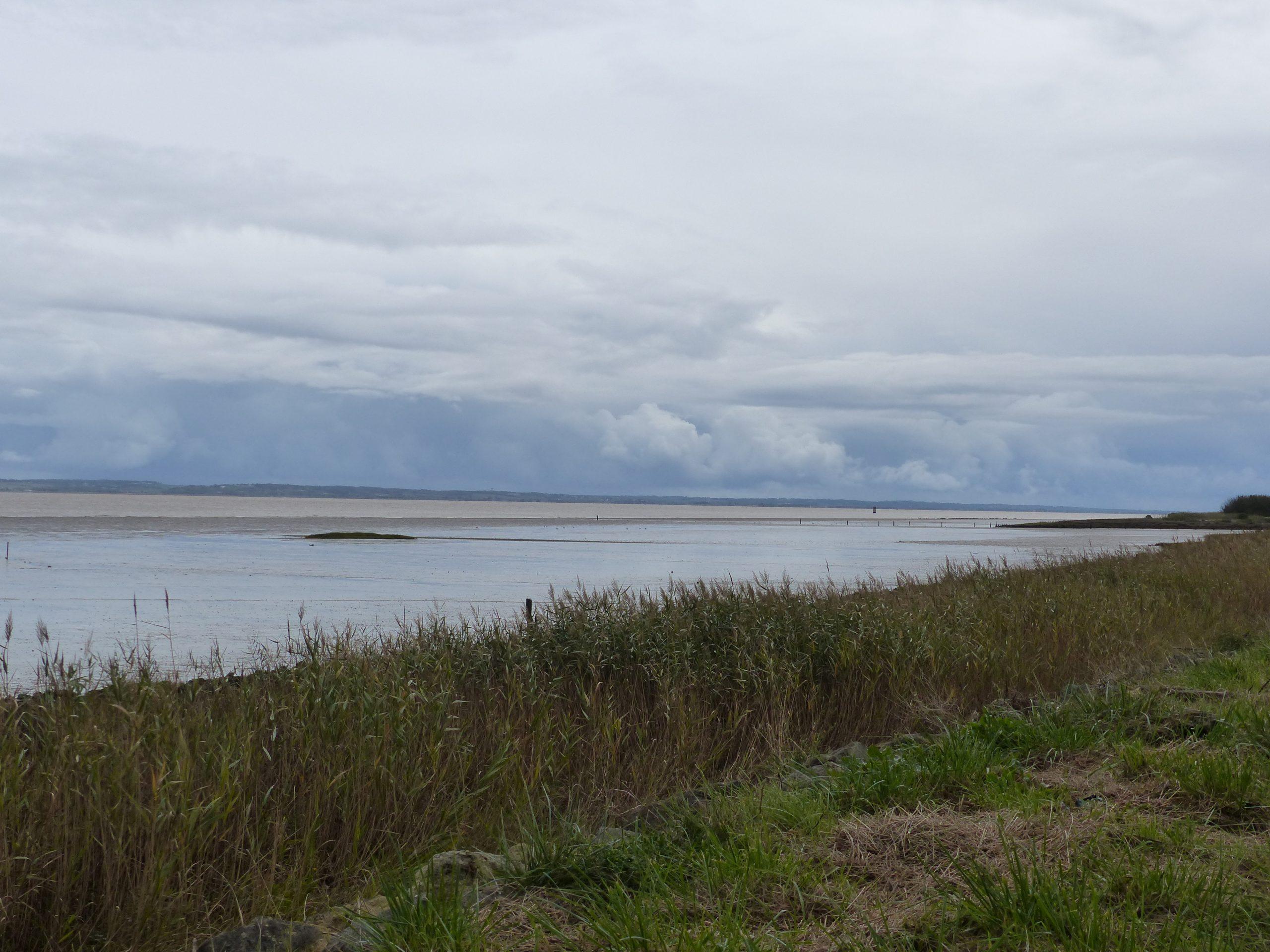 Vue estuarienne Valeyrac