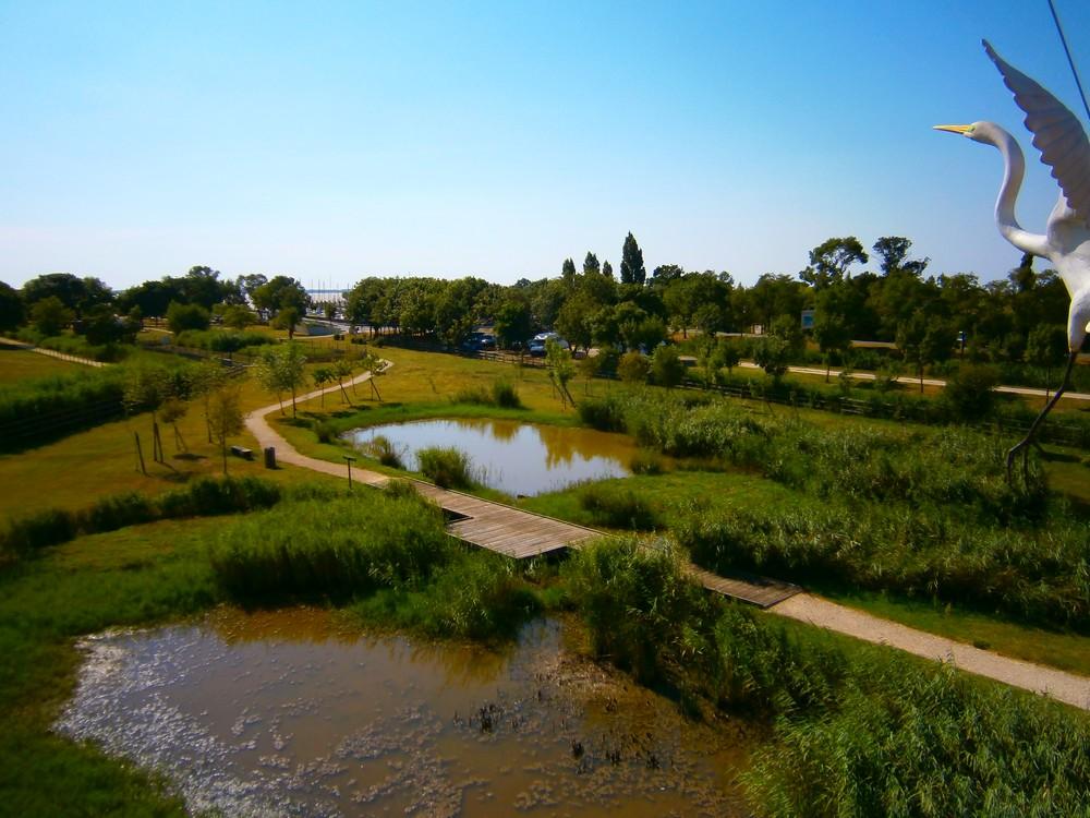Terres d'Oiseaux Braud et Saint-Louis vignette