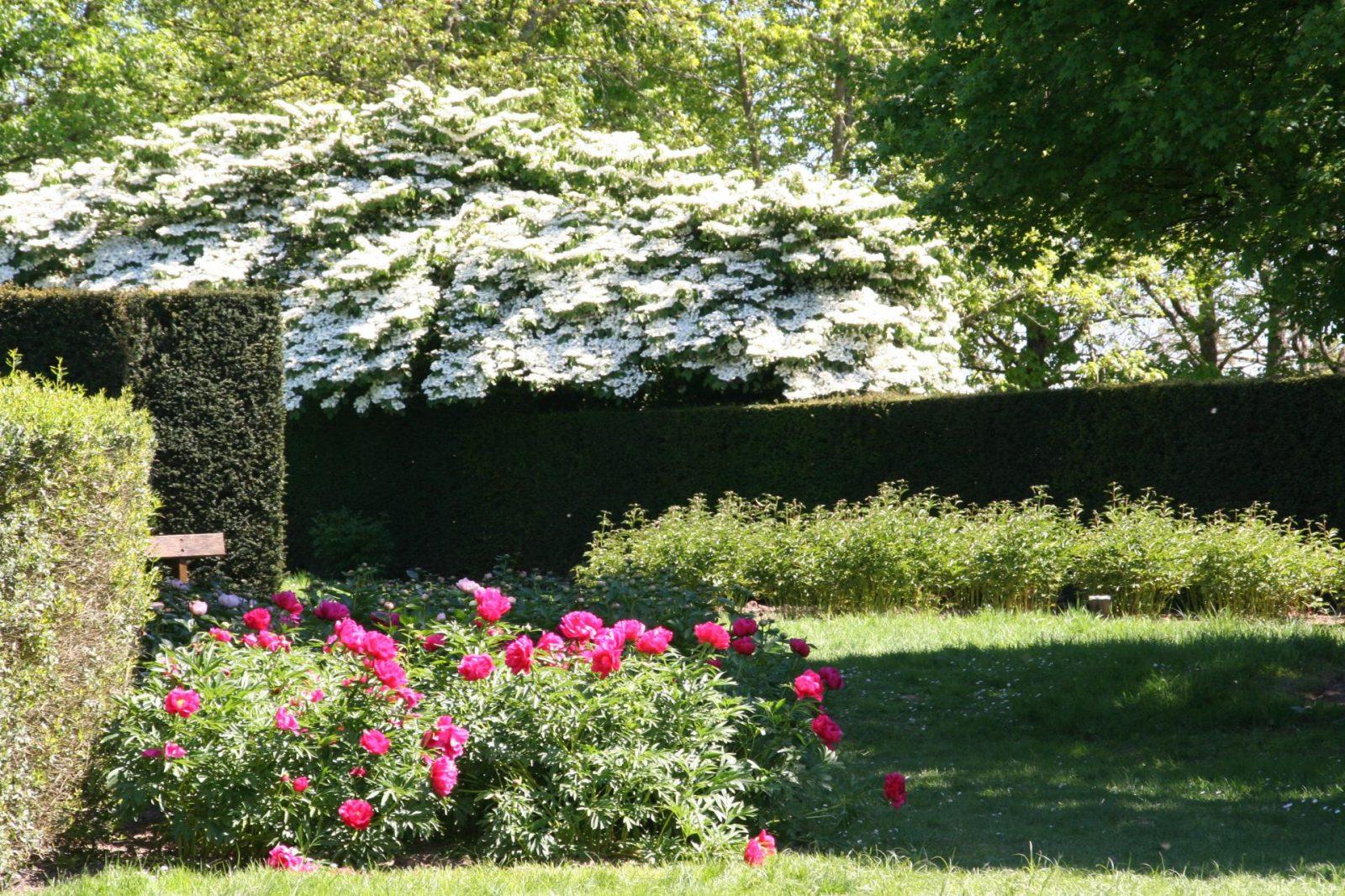 Parc Floral PP