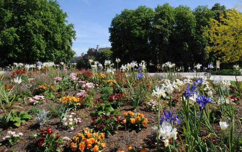 Parc bordelais (1)