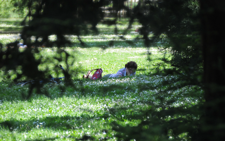 Parc bordelais (4)