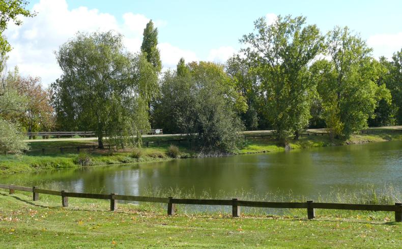 Parc de cantefrene4