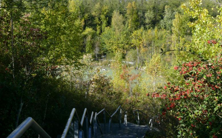 Parc de l'Ermitage – Lormont (2)