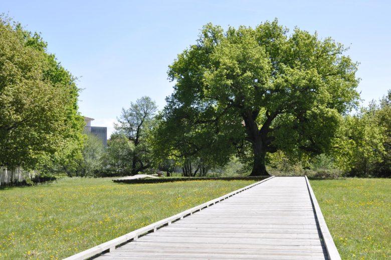 Parc du ruisseau © Ville du Haillan (3)