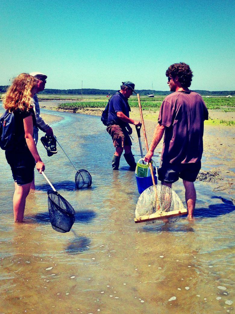 Pêche à pied ©J.Boissière (Office de Tourisme Arès) (111)