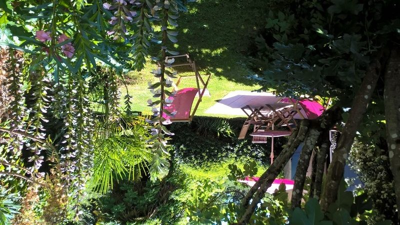 Petit Gîte de Fenouil_Loc saisonnière_Civrac de Blaye_Jardin_800x600