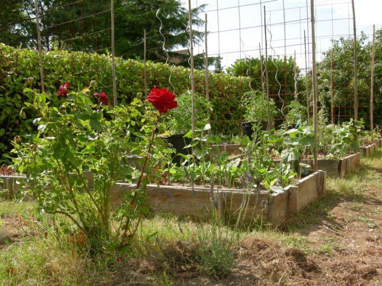 Photo jardin2