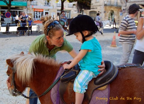 Poney – Poney Club de Sainte-Foy