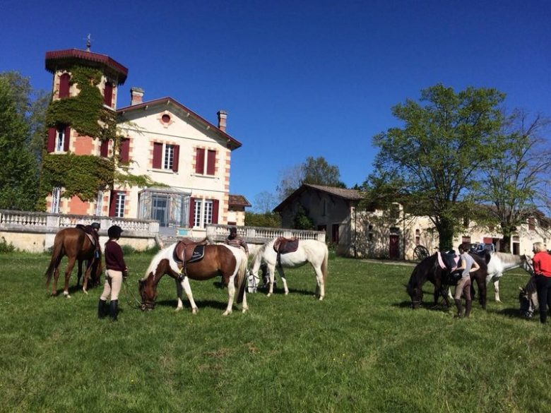 Poney-club du Château Perron