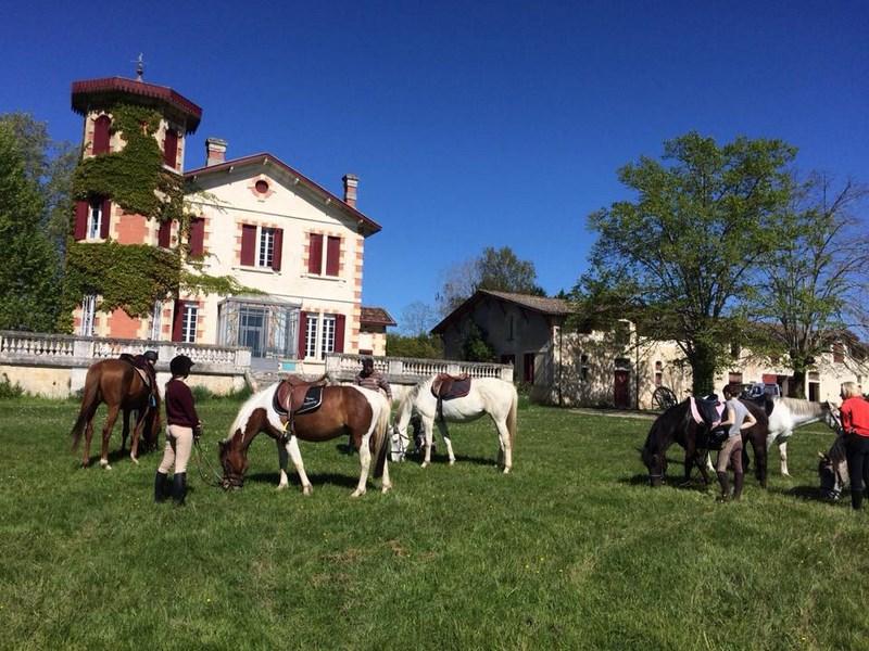 Poney-club du Château Perron – ROAILLAN – Sud-Gironde