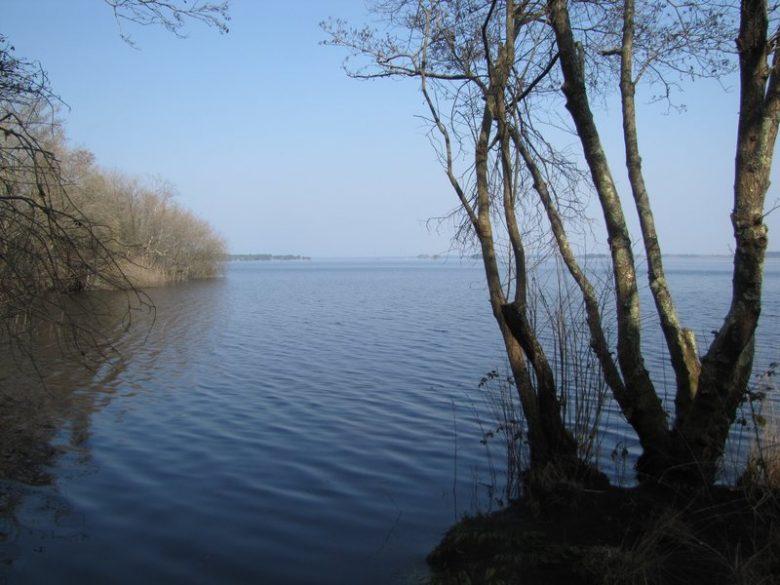 Rive ouest du lac