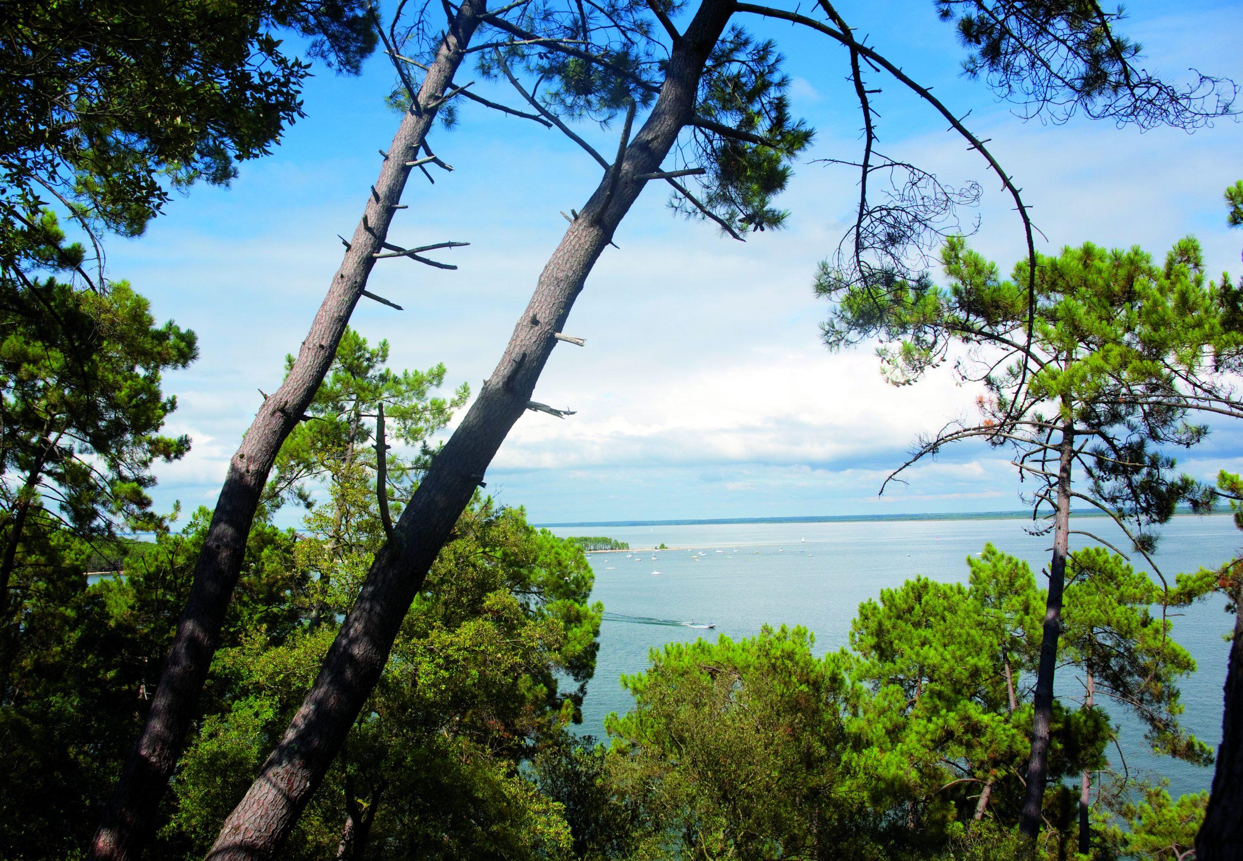 Sentier du lac Maubuisson – © Médoc Atlantique