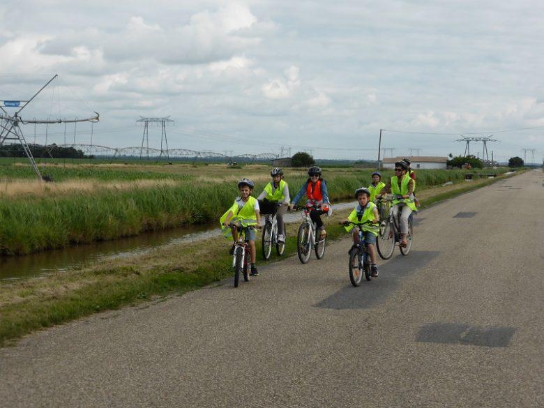 Sortie vélo Terres d'Oiseaux Braud et Saint-Louis 800×600