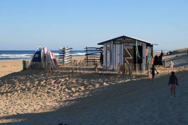 Surf_Center (6)